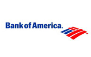 Bank of America: 5 year website brand vision and design