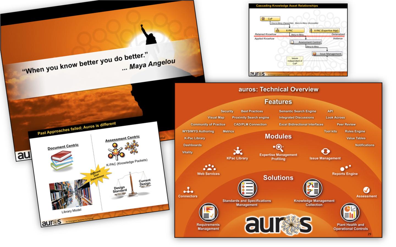 <p>Sales presentation story and visual look</p>