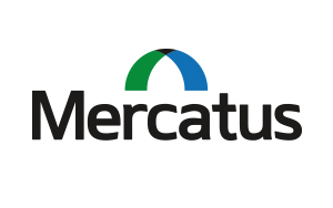 Mercatus: Brand Development