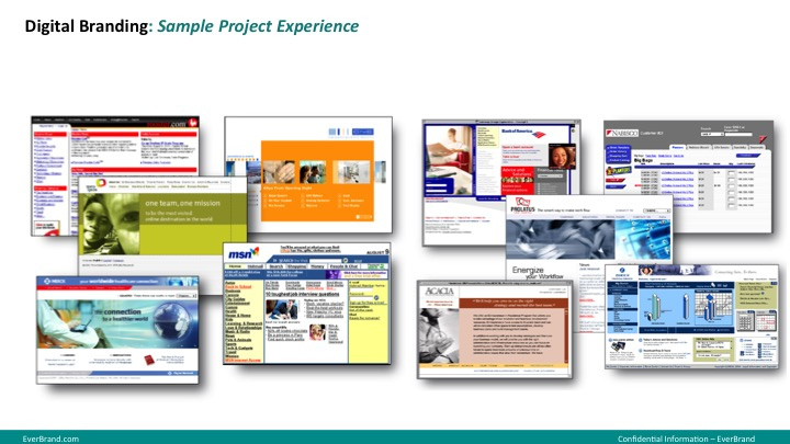 <p>Website and Intranet Design</p>
