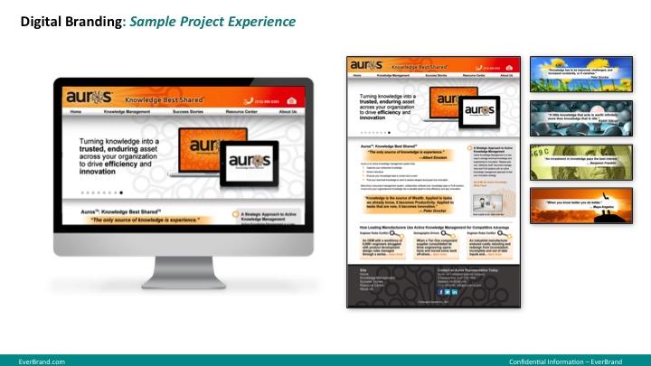 <p>Aurus website</p>